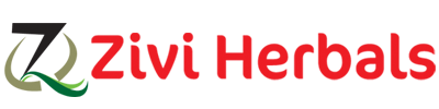 zivi-logo