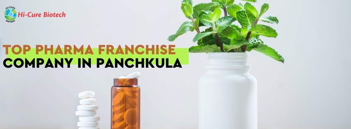 TOP PHARMA FRANCHISE COMPANY IN PANCHKULA